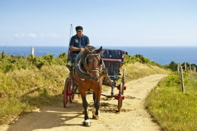 Horse And Cart, Sark, Bailiwick Of Guernsey, Channel Islands